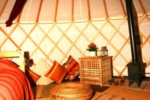 yurt holiday in Pantglas