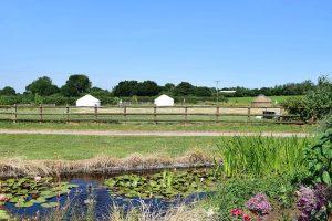 yurt holiday in Dorset